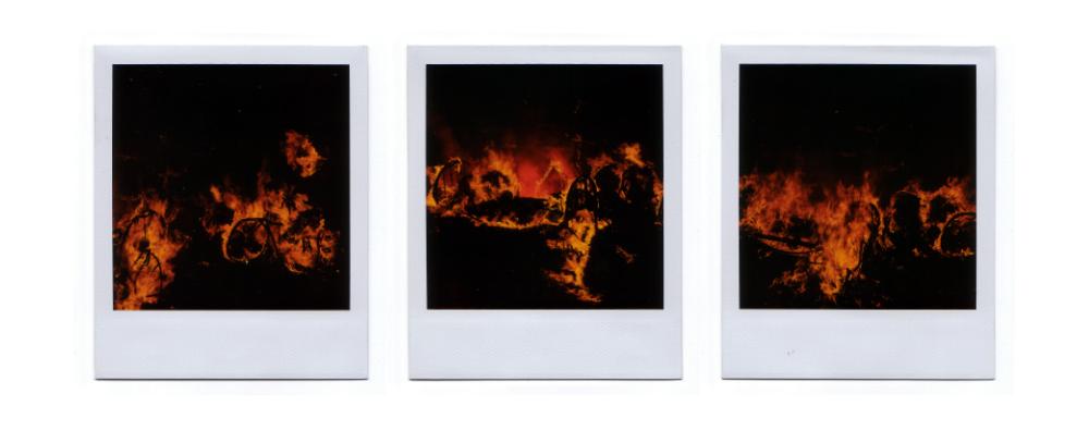 SX70 Polaroids - Set One