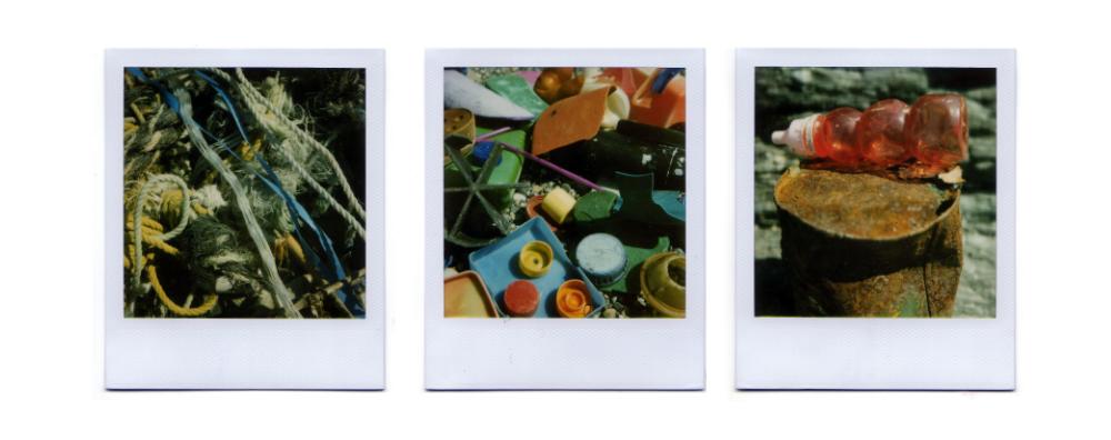 SX70 Polaroids - Set Two